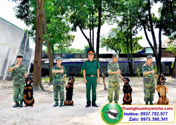 trung tâm huấn luyện chó
