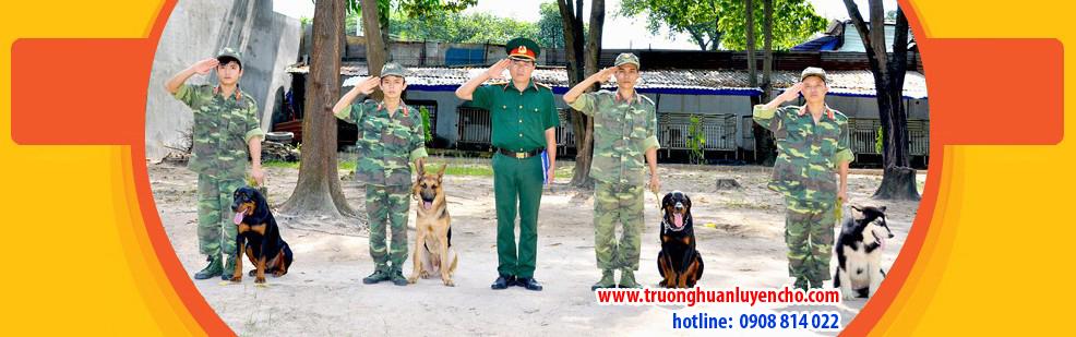 huan-luyen-cho-nghiep-vu-1