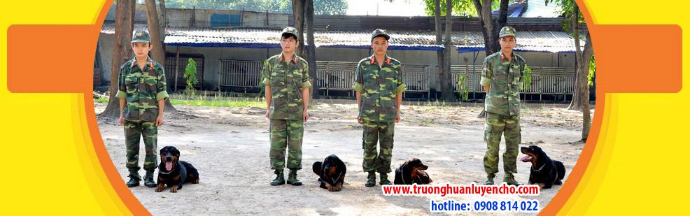 huan-luyen-cho-nghiep-vu-3
