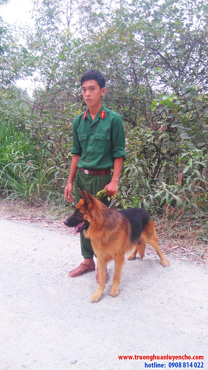 huan-luyen-cho-a4